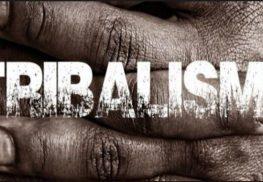 Gouvernance locale: autochtonie et graine de tribalisme (2)